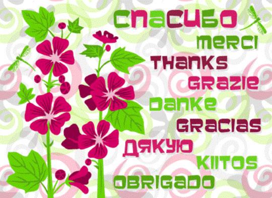 На английском языке благодарность за поздравления с днем рождения